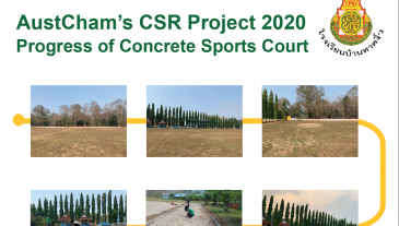 Progress of CSR Project-011