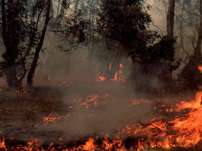 fire_australia