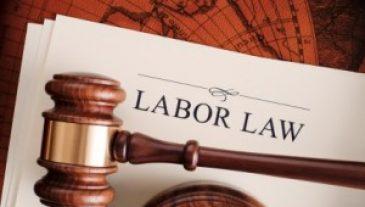 Labor_Employment_Law_2013_IMEC-300x199