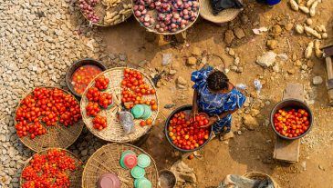 Lanscape,Of,A,Typical,African,Market